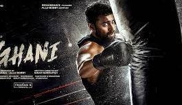 Ghani Movie